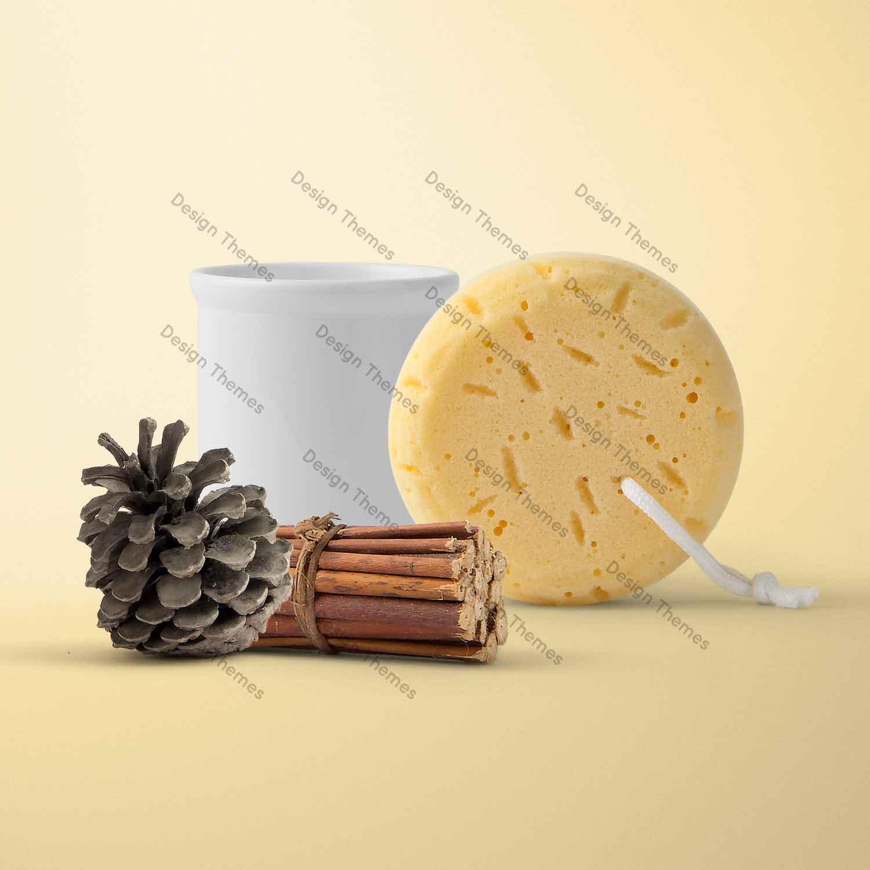 sponge and clove pack